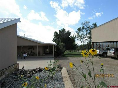 23270 ROAD X, LEWIS, CO 81327 - Photo 2