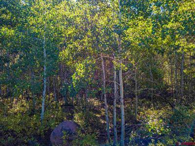 LOT 12 STONEY CREEK ROAD, Hotchkiss, CO 81419 - Photo 2