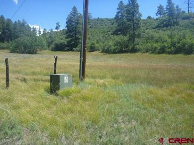 979 CACTUS DR, Pagosa Springs, CO 81147 - Photo 1