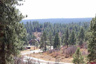 72 SANTINO PL, Pagosa Springs, CO 81147 - Photo 1