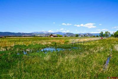 11487 HIGHWAY 550, Durango, CO 81303 - Photo 2