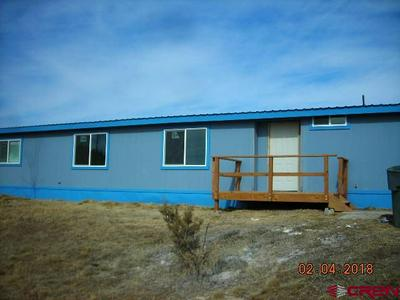 123 TRADE WINDS LN, Bayfield, CO 81122 - Photo 2