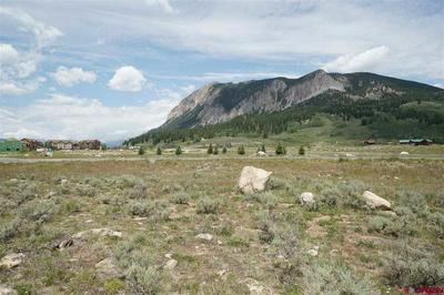49 WHITE STALLION CIR, Crested Butte, CO 81224 - Photo 2
