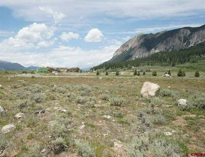 49 WHITE STALLION CIR, Crested Butte, CO 81224 - Photo 1