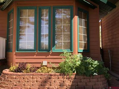521 NE GINTERS GROVE LN, Cedaredge, CO 81413 - Photo 2
