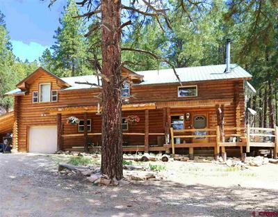 11623 COUNTY ROAD 502, Bayfield, CO 81122 - Photo 1