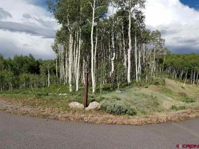 TBD BLUE SKY LANE, Montrose, CO 81403 - Photo 1