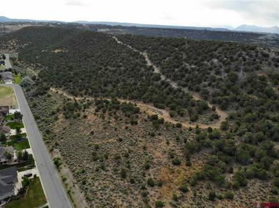 TBD TBD ROAD, Cedaredge, CO 81413 - Photo 1