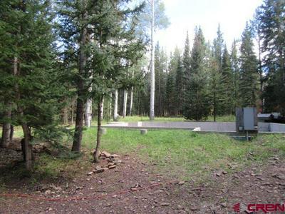 302 SPRUCE RD, Cimarron, CO 81220 - Photo 1