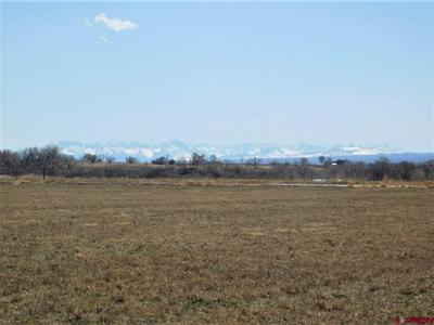 6506 5600 RD, Olathe, CO 81425 - Photo 1