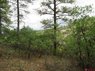 54 RIVER RUN DR, Pagosa Springs, CO 81147 - Photo 2