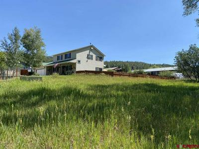 274 MEADOWBROOK DR, Bayfield, CO 81122 - Photo 2