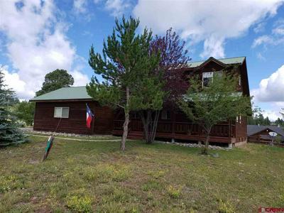 311 FALCON PL, Pagosa Springs, CO 81147 - Photo 1