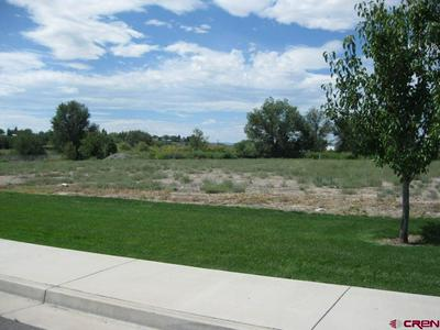 TBD VALLEY VIEW DR - LOT 4, Delta, CO 81416 - Photo 2