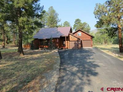 176 BRISTLE CONE DR, SOUTH FORK, CO 81154 - Photo 2