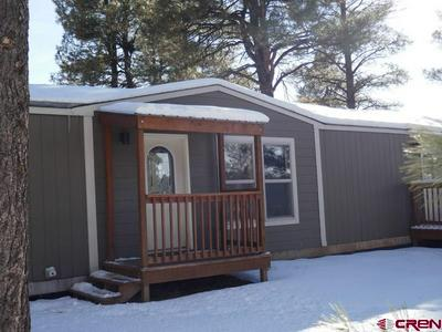 364 FIRESIDE ST, Pagosa Springs, CO 81147 - Photo 1
