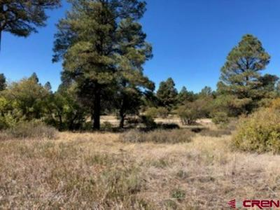 1223 TRAILS BLVD, Pagosa Springs, CO 81147 - Photo 2
