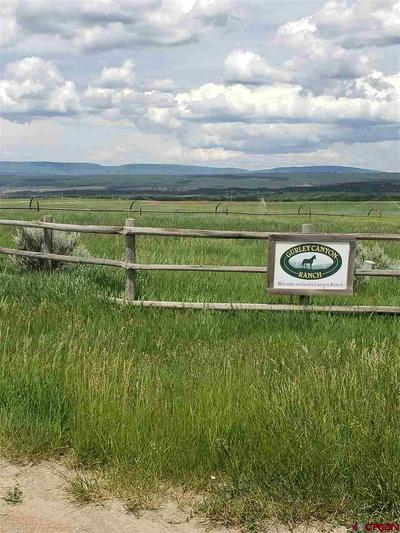 9 V44 ROAD E, Norwood, CO 81423 - Photo 1
