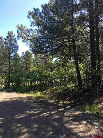 117 HEATHER PL, Pagosa Springs, CO 81147 - Photo 2