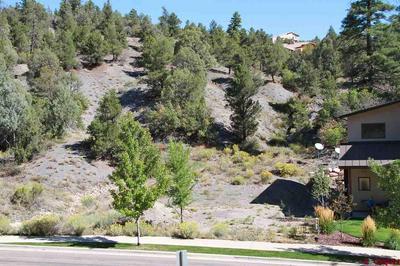 169 ELLA VITA CT, Durango, CO 81301 - Photo 1