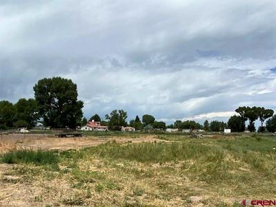 565 HICKORY ST, Sanford, CO 81151 - Photo 2