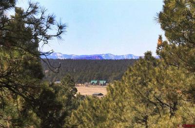 48 MASTERS CIR, Pagosa Springs, CO 81147 - Photo 1