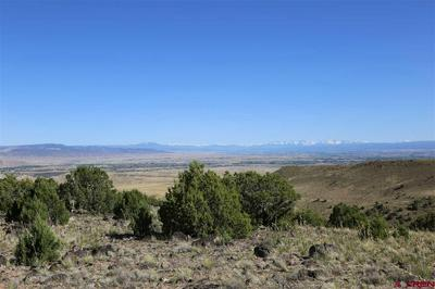 PARCEL 11 OAK CREEK ROAD, Eckert, CO 81418 - Photo 2