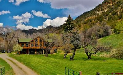 44913 BOWIE RD, Paonia, CO 81428 - Photo 1