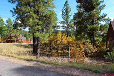 15 MILL CREEK CT, Durango, CO 81301 - Photo 1