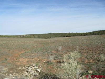 16990 ROAD 14, PLEASANT VIEW, CO 81331 - Photo 1