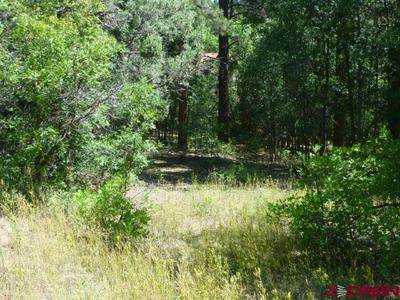 1091 CACTUS DR, Pagosa Springs, CO 81147 - Photo 1