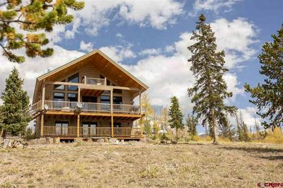 3086 FOREST RD 503, CREEDE, CO 81130 - Photo 1