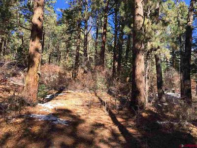 373 ROSALIE DR, Durango, CO 81301 - Photo 2
