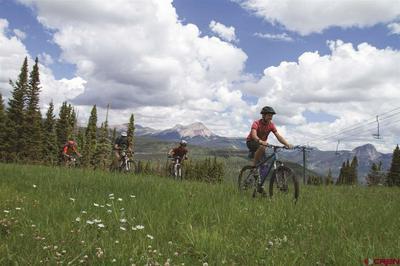 24 SHEOL ST # 508, Durango, CO 81301 - Photo 2
