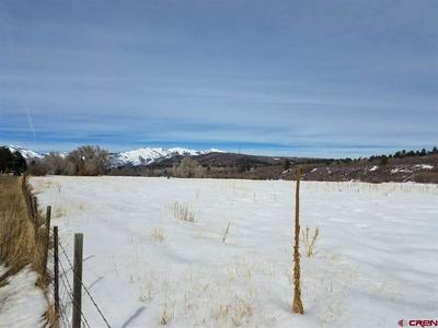 22500 HIGHWAY 140, HESPERUS, CO 81326 - Photo 2