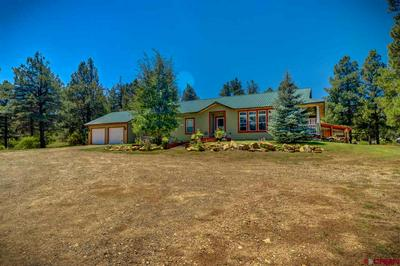 155 HURT DR, Pagosa Springs, CO 81147 - Photo 1