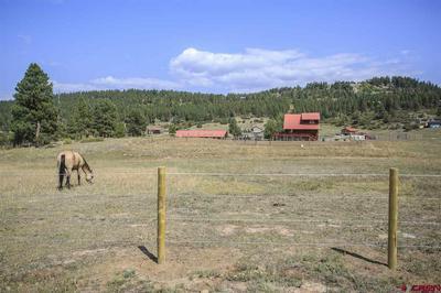 904 CAPITAN CIR, Pagosa Springs, CO 81147 - Photo 2