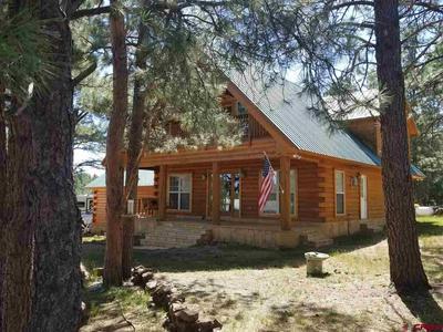 688 HILLS CIR, Pagosa Springs, CO 81147 - Photo 1