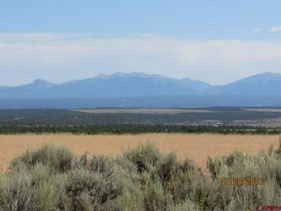 TBD COUNTY ROAD 106, HESPERUS, CO 81326 - Photo 1