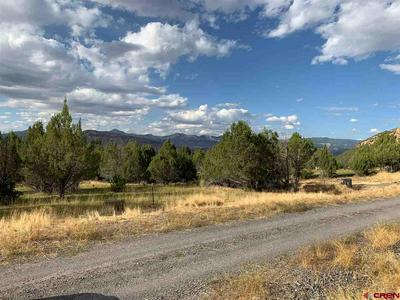 10791 52 1/2 ROAD, Molina, CO 81646 - Photo 1