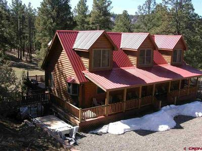 704 TWO BEAR RD, PAGOSA SPRINGS, CO 81147 - Photo 2