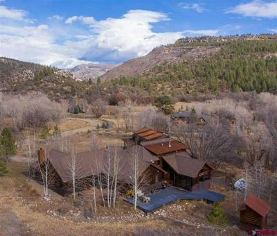 54 TURTLE LAKE MEADOWS RD, Durango, CO 81301 - Photo 1