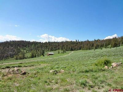 TBD MOSQUITO TRAIL, Powderhorn, CO 81243 - Photo 2