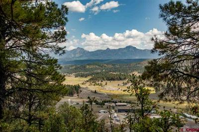 1301 LIGHT PLANT RD, Pagosa Springs, CO 81147 - Photo 1