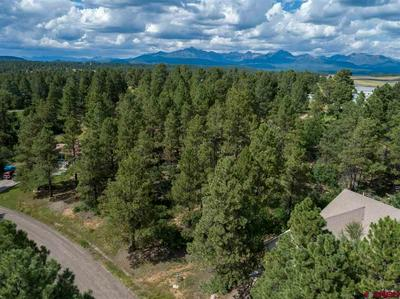 311 W GOLF PL, Pagosa Springs, CO 81147 - Photo 1