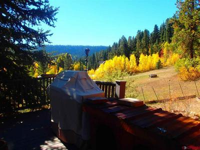 651 TREW CREEK RD, Durango, CO 81301 - Photo 2