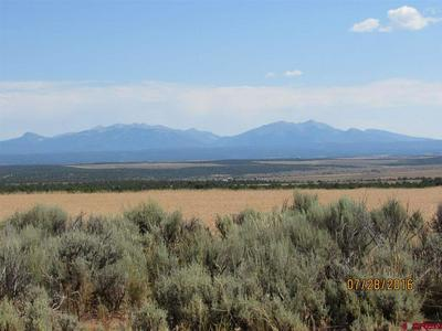 TBD COUNTY ROAD 106, HESPERUS, CO 81326 - Photo 2