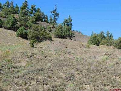 75 DANDELION DR, Pagosa Springs, CO 81147 - Photo 2