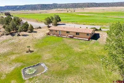 5120 COUNTY ROAD 330, Allison, CO 81137 - Photo 2