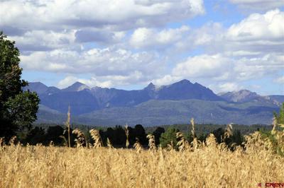 63 GREENWAY DR, Pagosa Springs, CO 81147 - Photo 1
